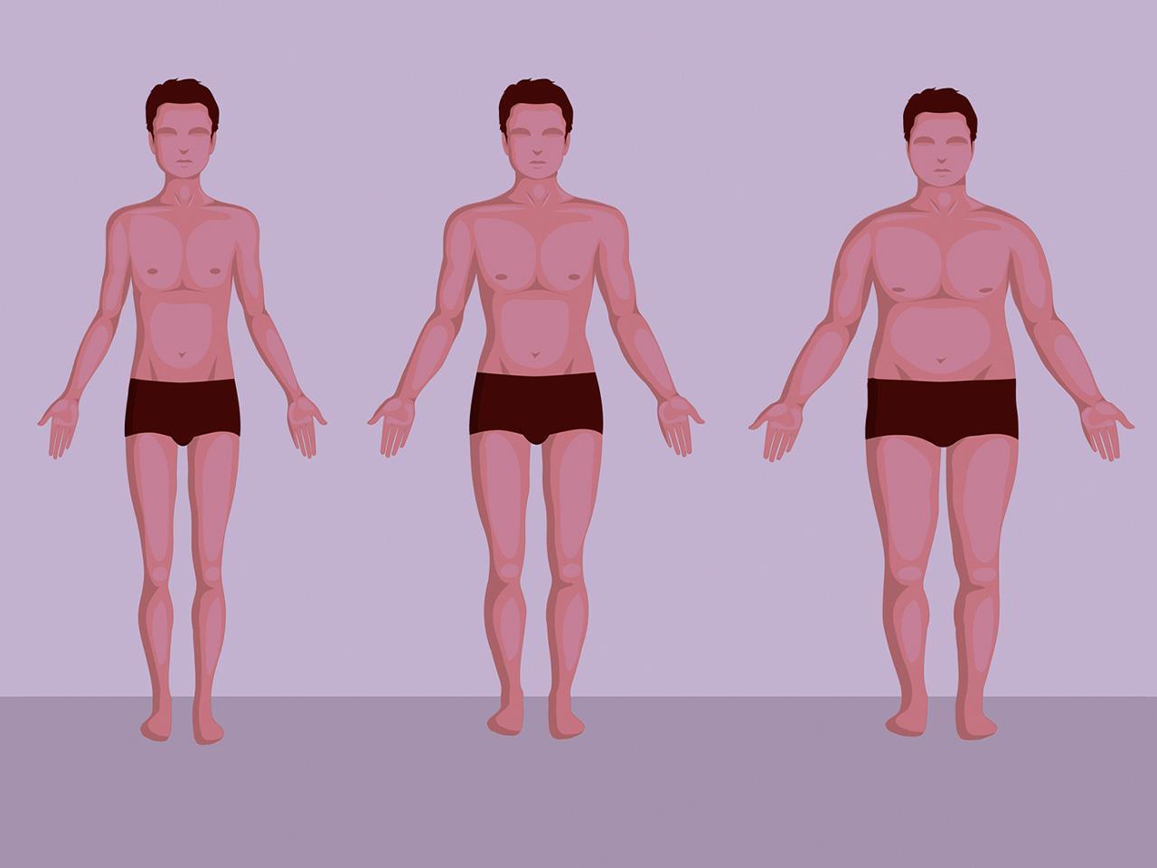 статьи есть виды телосложения у мужчин названия картинки как это