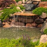 How to Make a Terrarium Waterfall